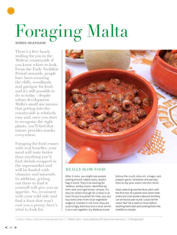 bizilla apr 15 foraging malta p42-page-001