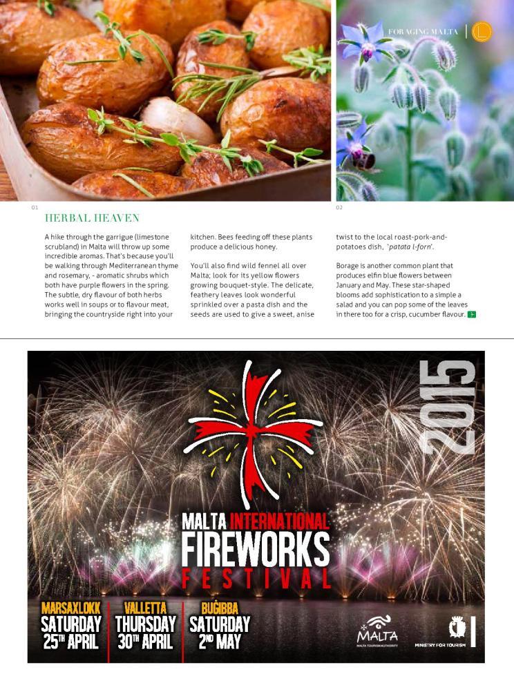 bizilla apr 15 foraging malta p42-page-002