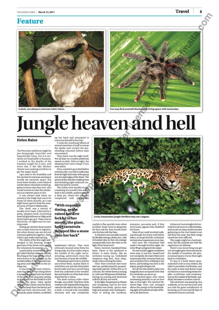 Helen jungle_1