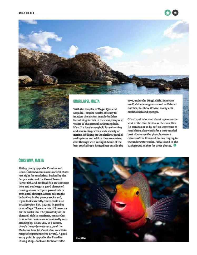 bizilla mar 16 - snorkel safari-page-002