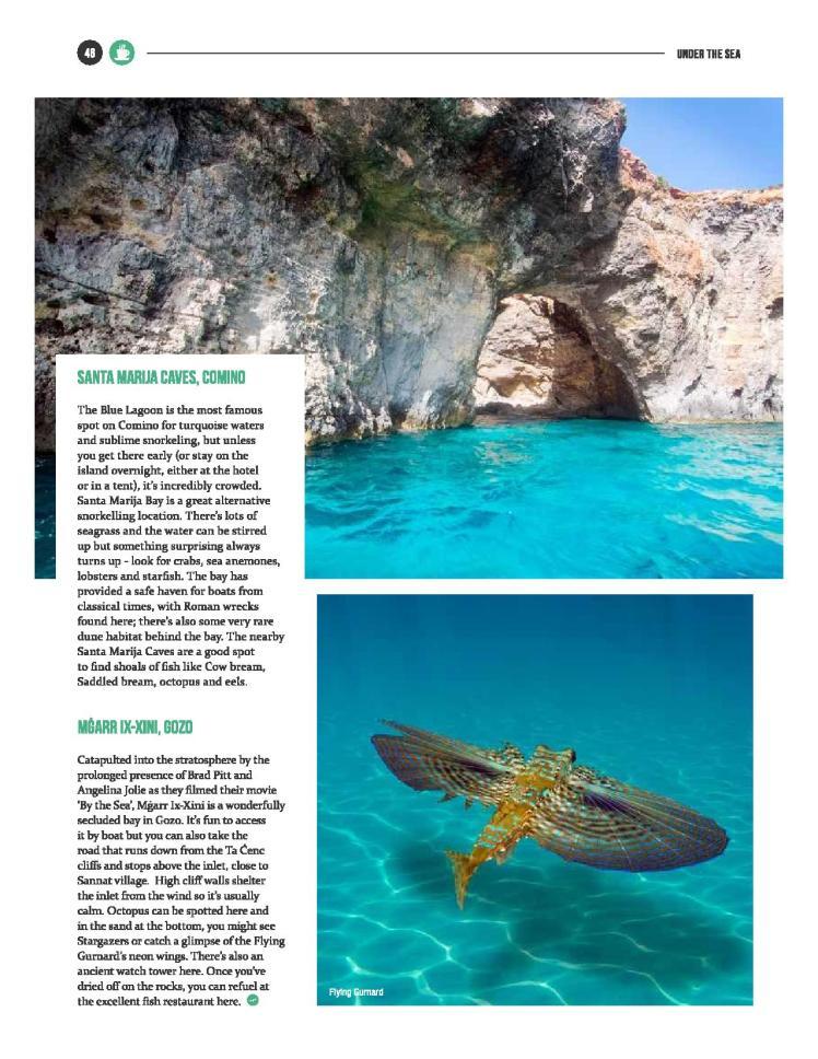 bizilla mar 16 - snorkel safari-page-003 (1)