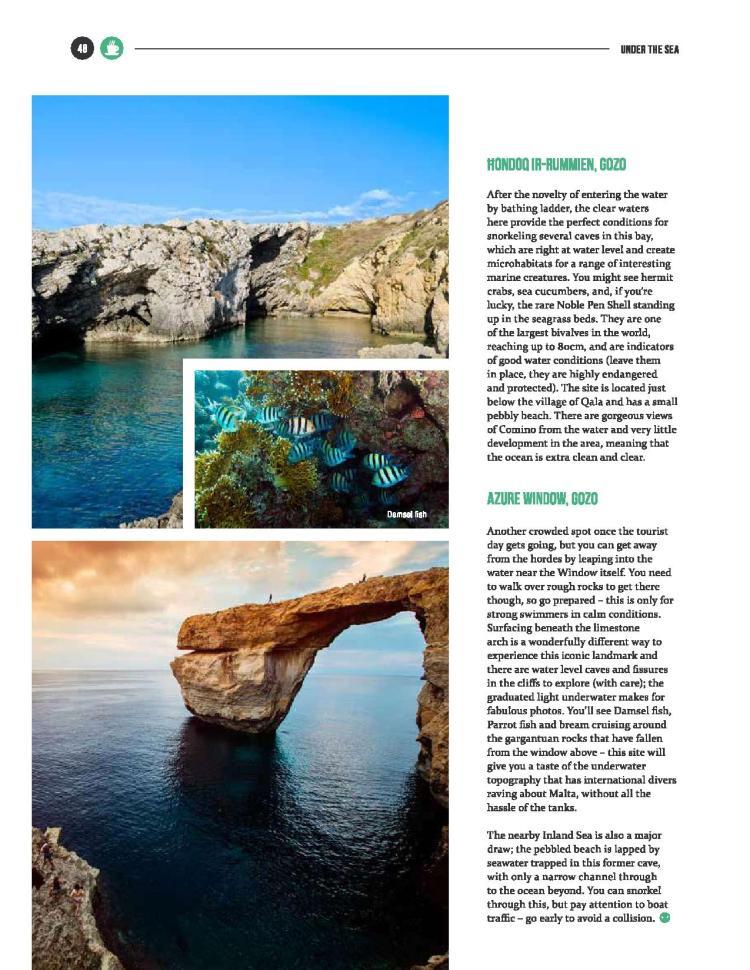 bizilla mar 16 - snorkel safari-page-004