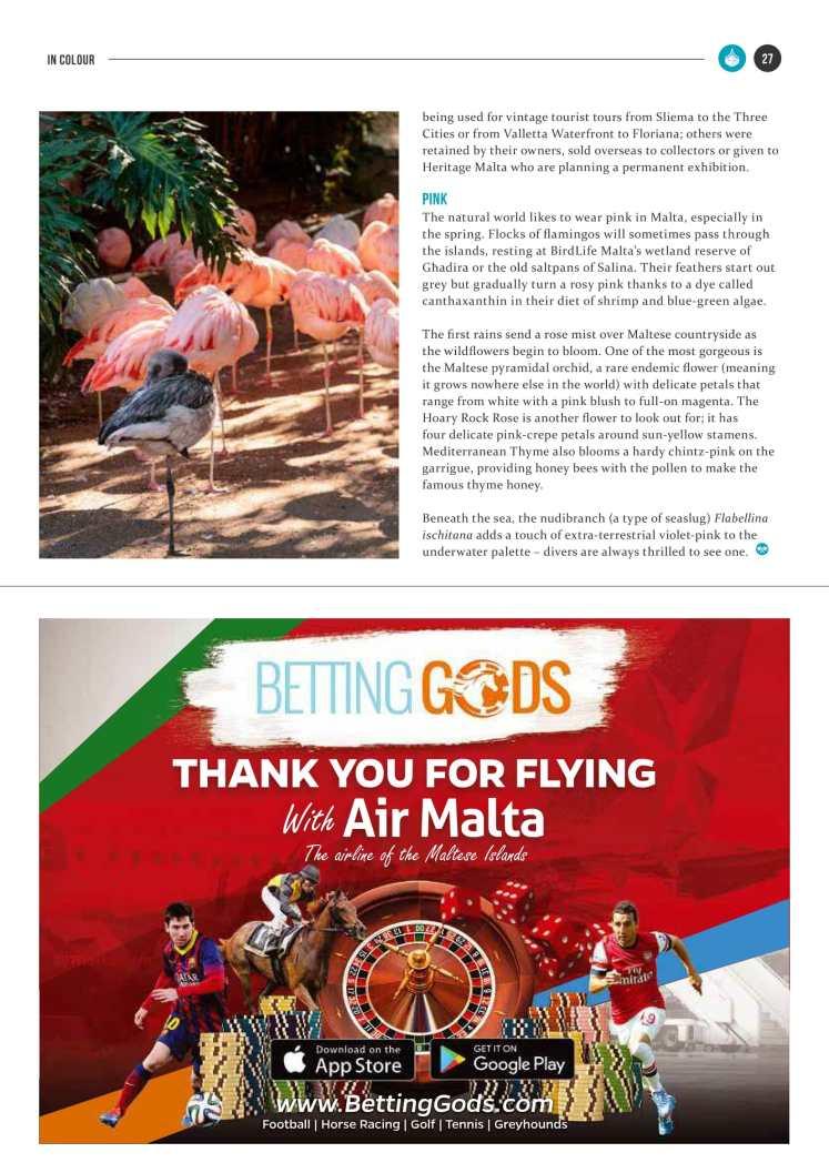 bizzilla-mar-17-colours-of-malta-4