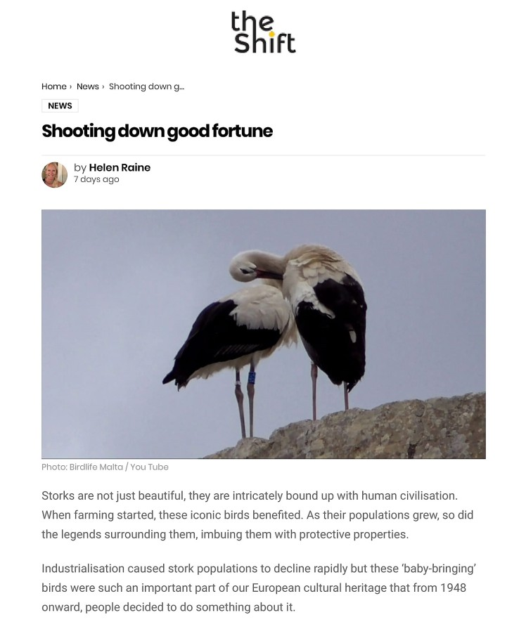 Shooting down good fortune – The Shift News-1